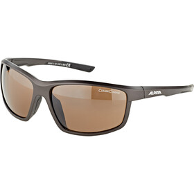 Alpina Defey Lunettes, tin matt-black/brown mirror